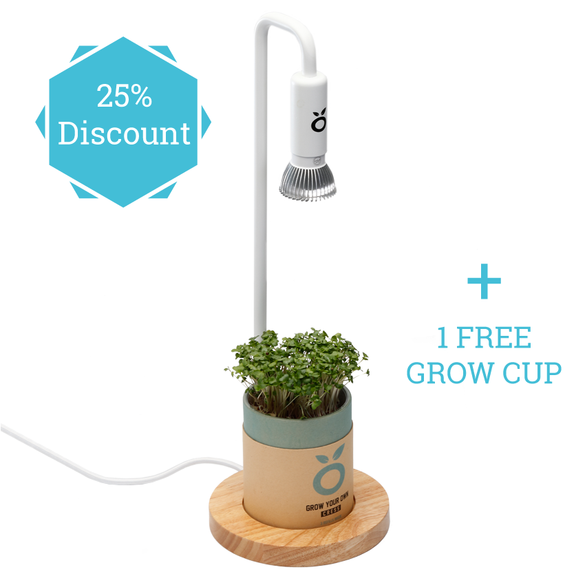 grow in the dark incl 1 grow cup grown